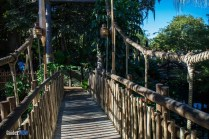 Swiss Family Robinson Treehouse - Bridge - Magic Kingdom Attraction
